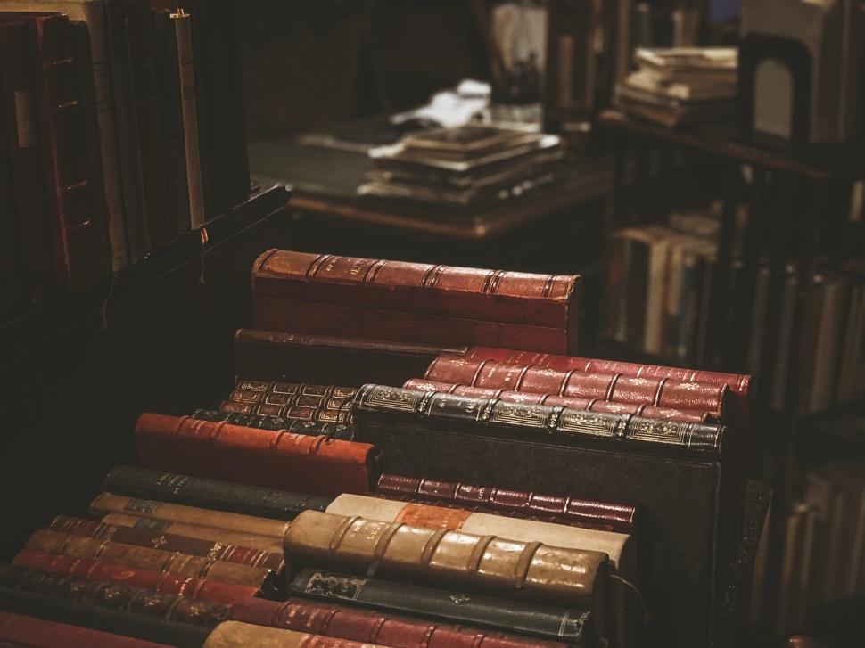 Old books at Galerie Vivienne, Paris France